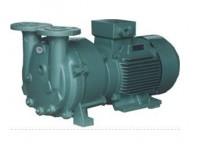 2BV水环泵